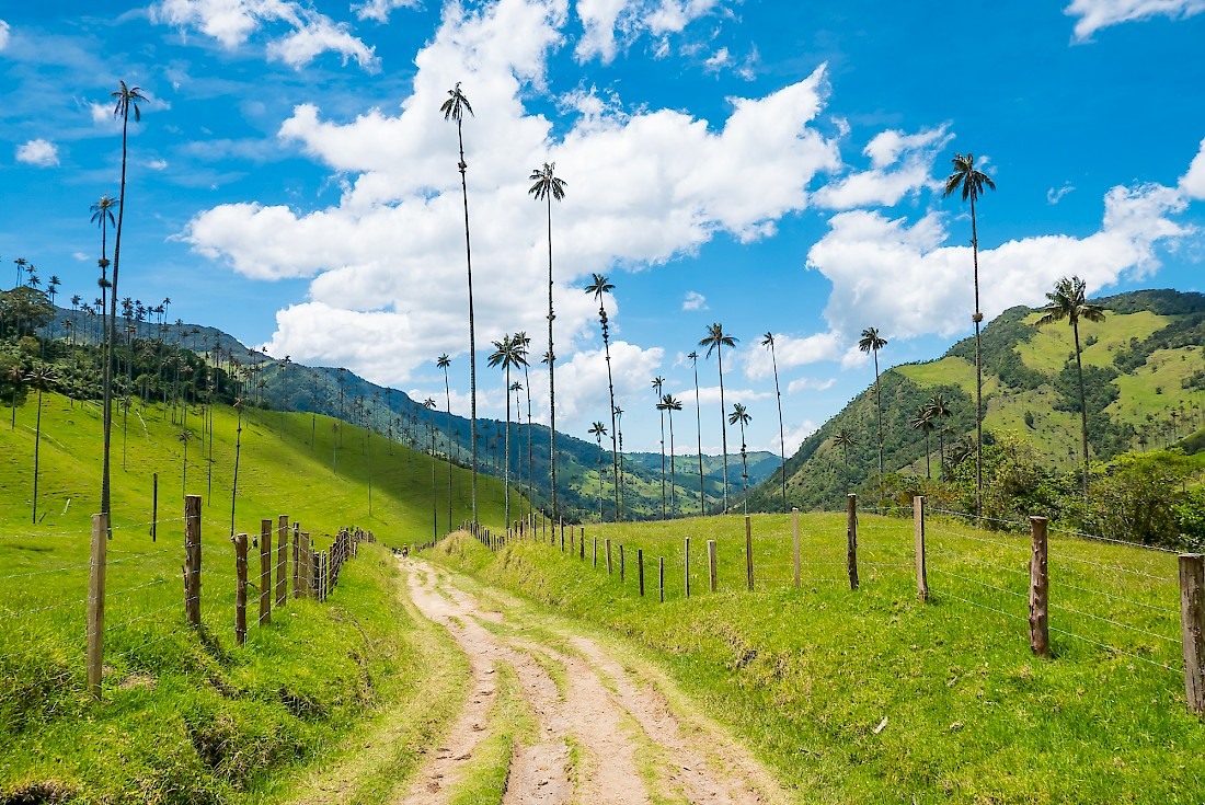 Hiking Spots in Colombia